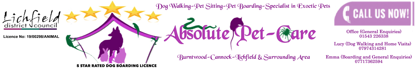 Absolute Pet Care